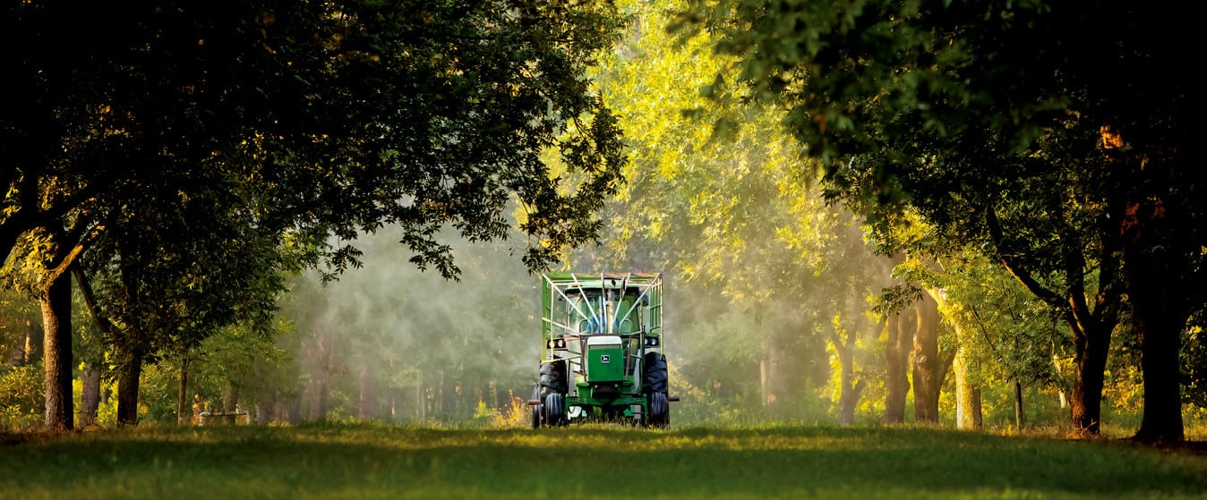 Tractor spraying pecan trees for sale